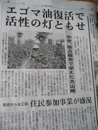 えごまプロジェクトが京都新聞に